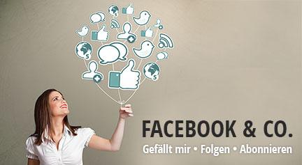 Linarto Soziale Netzwerke