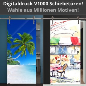 Digitaldruck Schiebetür V1000